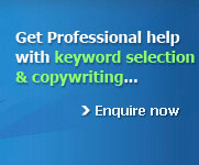 Professional help with keyword selection & copywriting