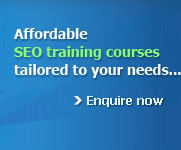 Beginner's SEO training tailored to your needs